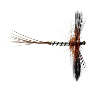 Spent Brown Mayfly