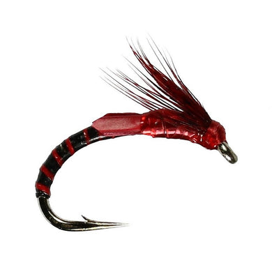 S-Film Emerger Claret Buzzzer