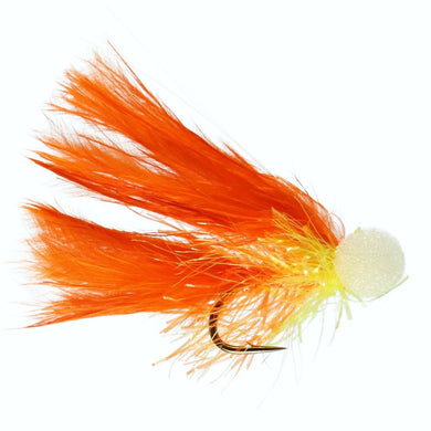 Orange Cat Booby (Size 10)
