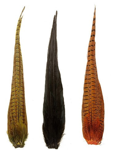Cock Pheasant Complete Tails