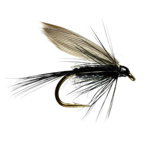 Black Gnat Winged Wet Fly
