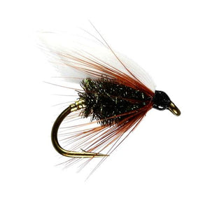 Coachman winged Wet Fly