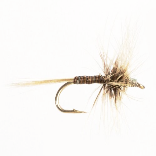 Dry Hackled Blue Quill (Size 14)