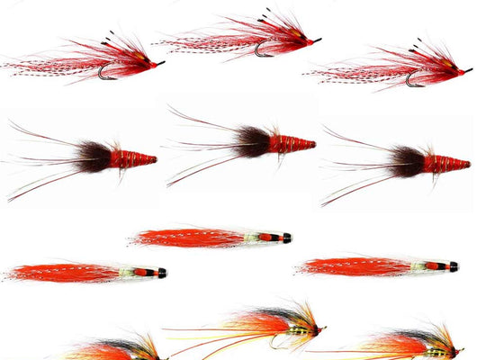 Autumn Salmon Flies 1 - Collection