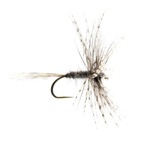 Grey March Brown Hackled Dry (Size 12)