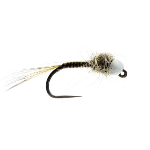 Hares Quill Tungsten Nymph Barbless