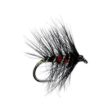 Irish Bibio Hackled Wet Fly (Size 12)