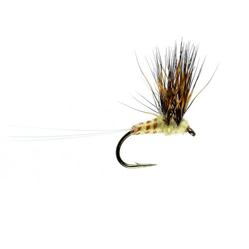 Lake Double Decker size 12
