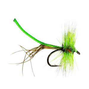 Lime Lanky Daddy  (Size 10)