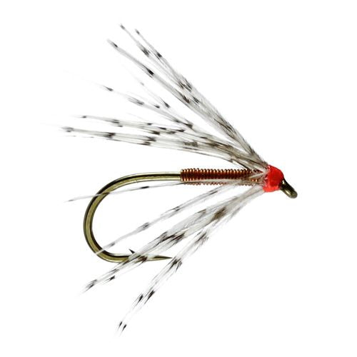 Partridge & Copper Spider (Size 14)