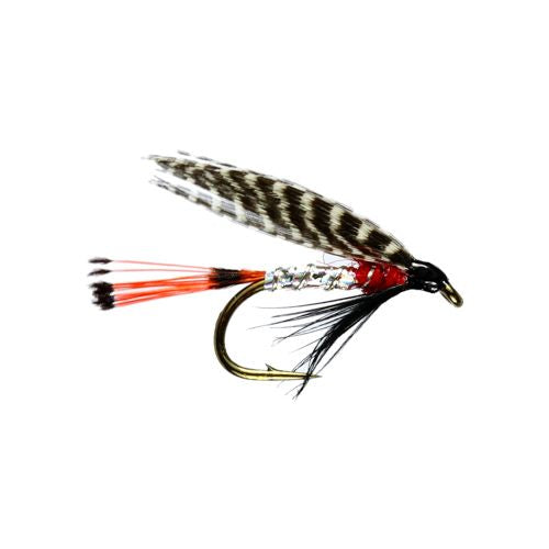 Peter Ross Winged Wet Fly