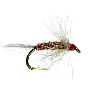 Pheasant Tail Hackled Wet Fly