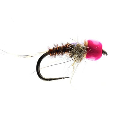 Pimp Bug Tungsten Nymph Barbless