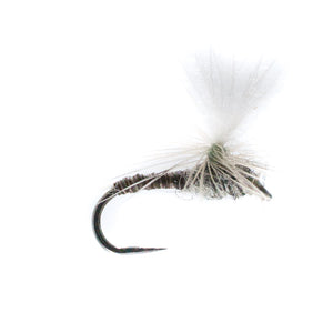 Barbless Universal Dry