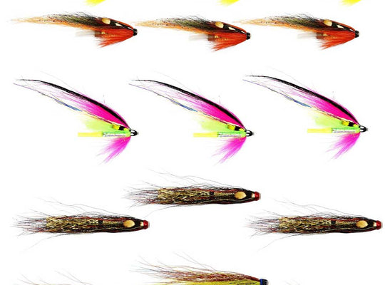 Spring Salmon Flies For The Tay & Tummel  - Collection