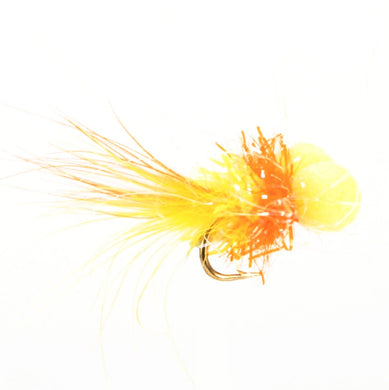 UV Straggle Booby Tequila (Size 10)