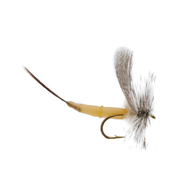 Detached Mayfly White Drake (Size 12)