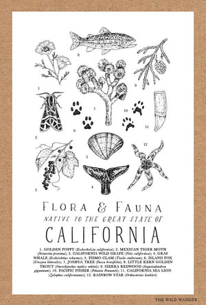 Field Guide to California