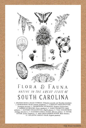 Field Guide to South Carolina