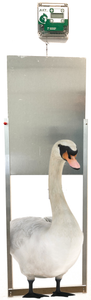 Automatic Programmable Goose Door Opener - Complete Kit - Largest Poultry Door Available-Cheeper Keeper