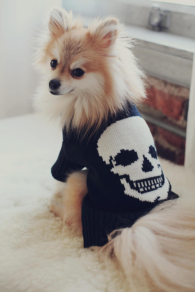 360 Cashmere | Dog Skull Original
