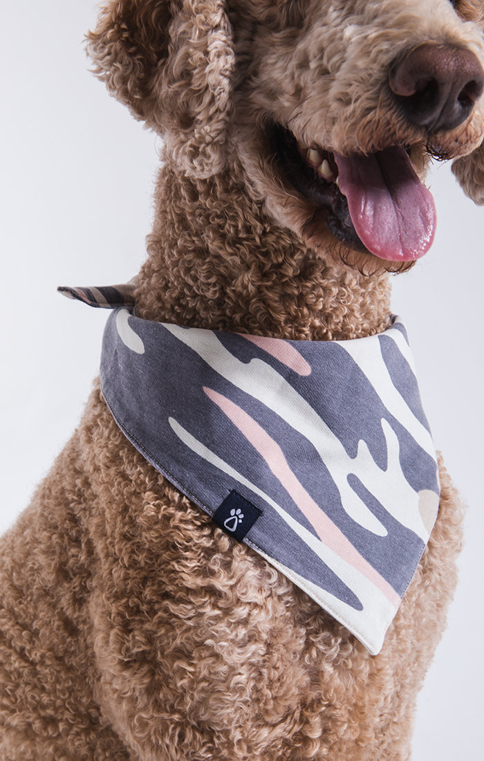 Z Supply | Doggy Camo Bandanna