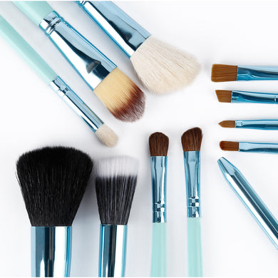 Set of 12 Black or Blue Professional Makeup Brushes