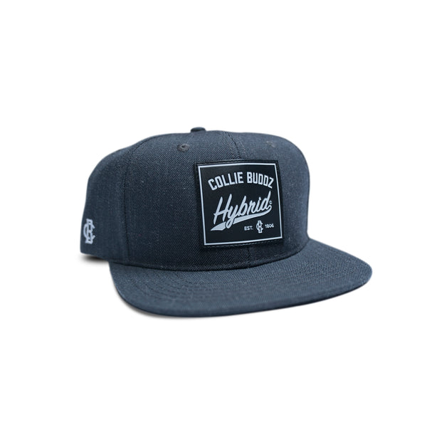 Collie Buddz - Hybrid Collection Grey Snapback