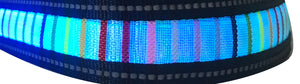 Rainbow Collar with Blue or Red Lights and chargeable via USB