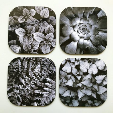 Black/White Nature Coaster Set