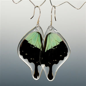 Apple Green Swallowtail Butterfly Bottom Wing Earrings