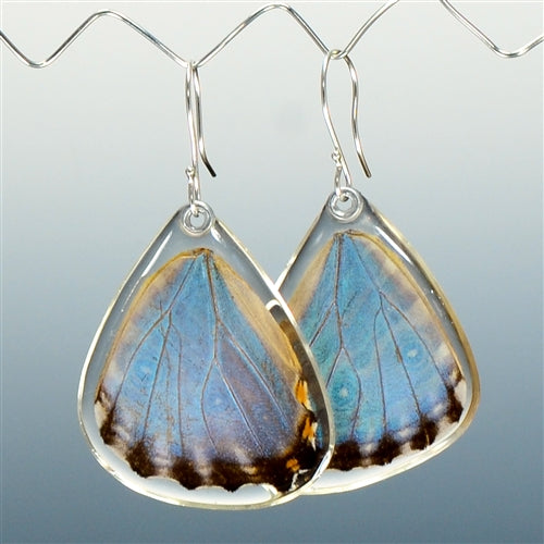 Blue Morpho Adonis Butterfly Bottom Wing Earrings