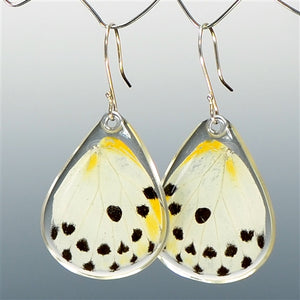 Calypso Caper White Butterfly Bottom Wing Earrings