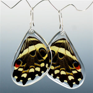 Christmas Butterfly Bottom Wing Earrings
