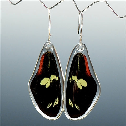 Doris Longwing Butterfly Top Wing Earrings