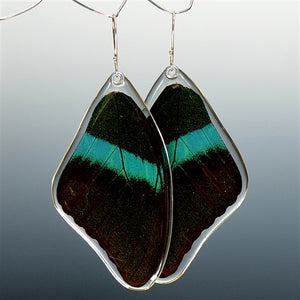 Peacock Swallowtail Butterfly Top Wing Earrings