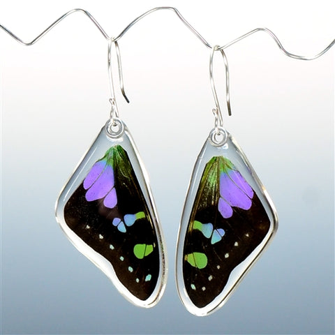 Purple Spotted Swallowtail Butterfly Top Wing Earrings