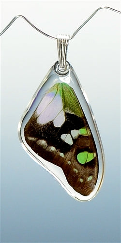 Purple Swallowtail Butterfly Top Wing Pendant