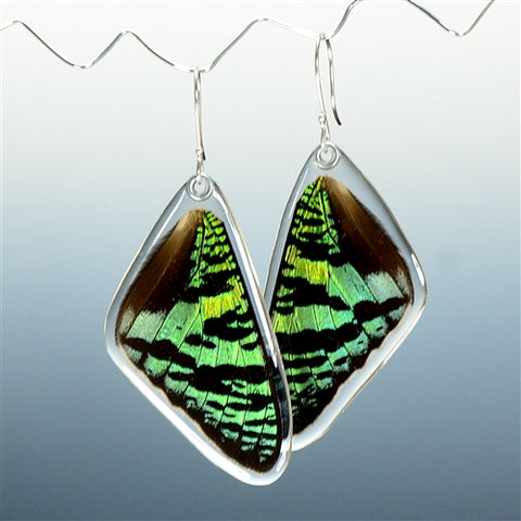 Sunset Butterfly Top Wing Earrings