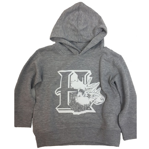 Toddler Hoodie Heather Grey