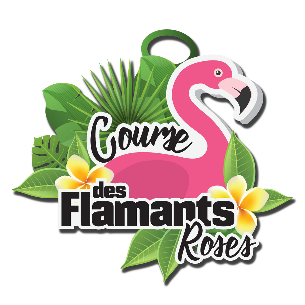 Course des Flamants roses