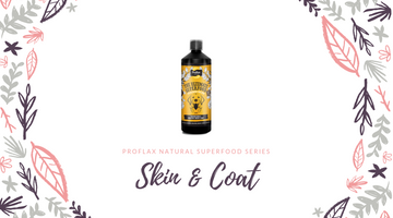 Proflax Natural Superfood Part Four: Skin & Coat