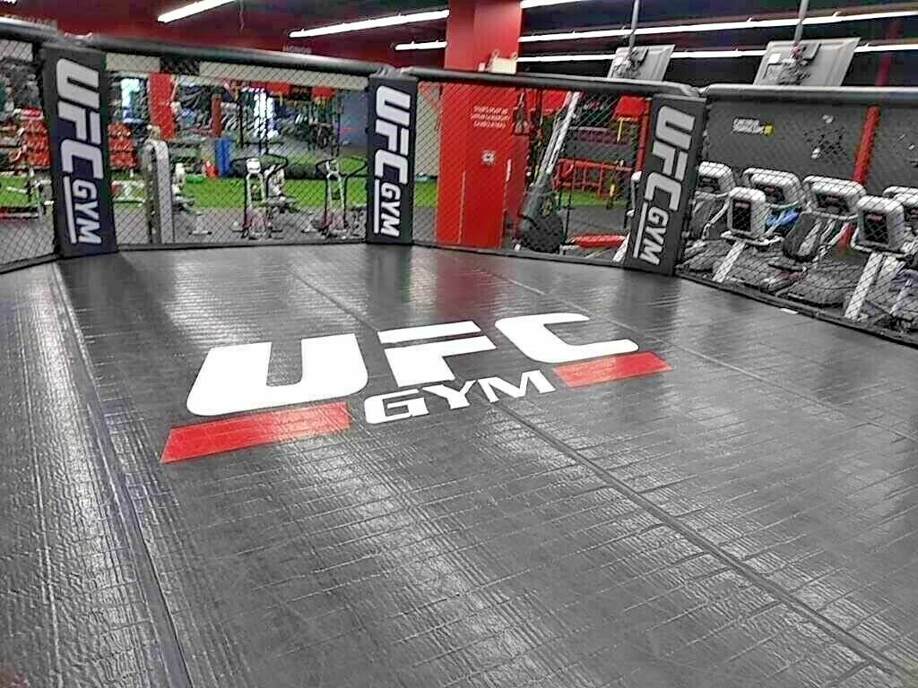 UFC Gym Official Octagon - Brand New Out of Box