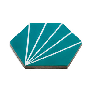 hex rays  ·  box of 12