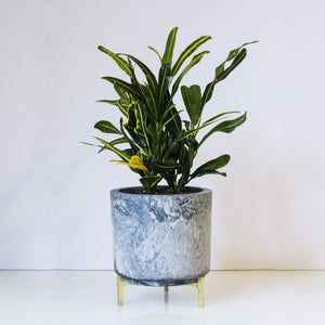 concrete large marbled planters