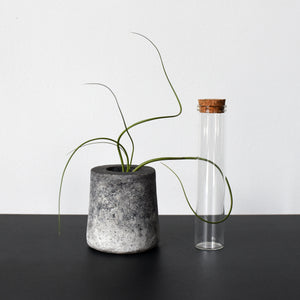 Stone Planter Pot with Glass test tube for propagation