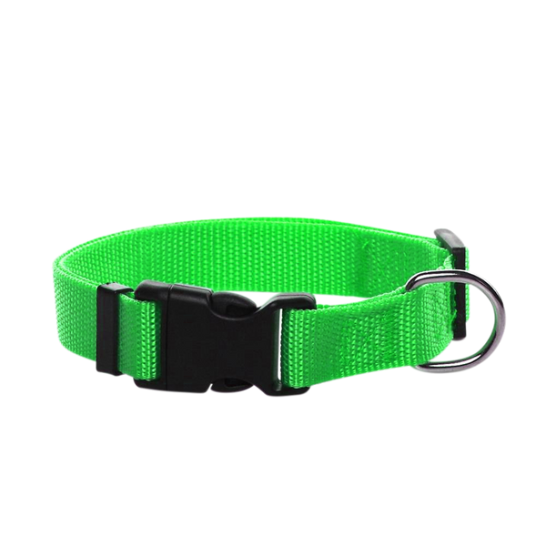 Adjustable Nylon Dog Collar Small