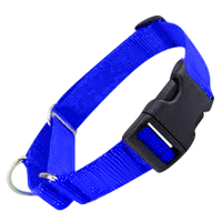 All Nylon Martingale + Plastic Quick Release XS