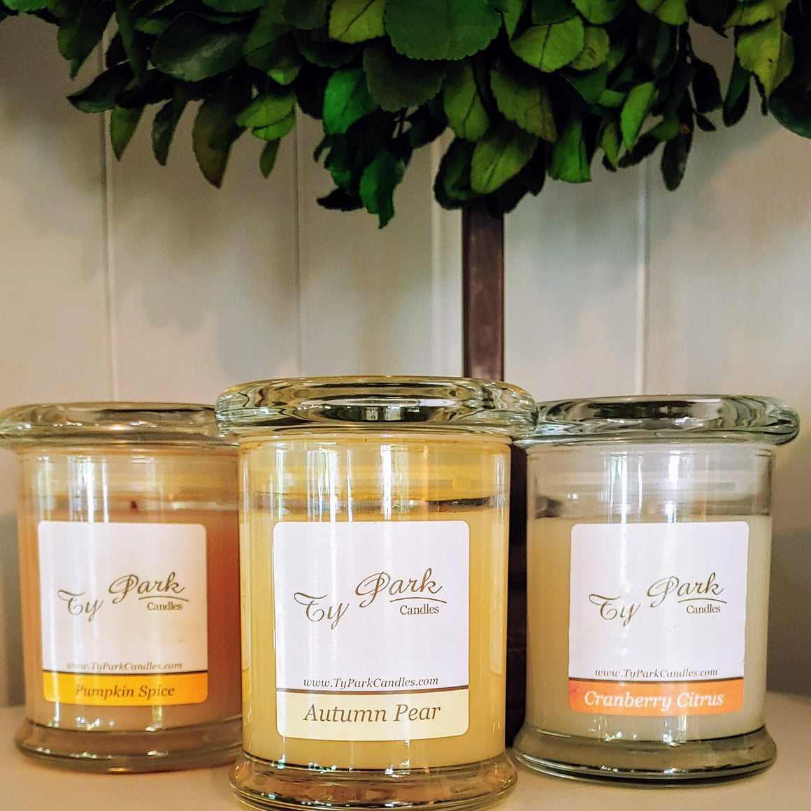 TY Park Candles