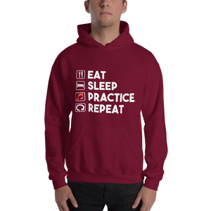 Eat Sleep Practice Repeat Music Hoodie